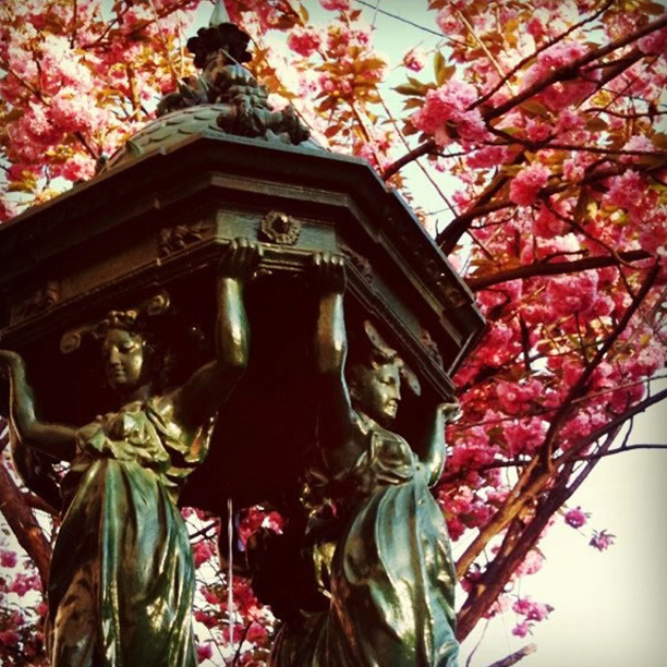 54-fountainandcherryblossoms-copy